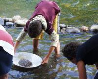 orpaillage camping corrèze dordogne
