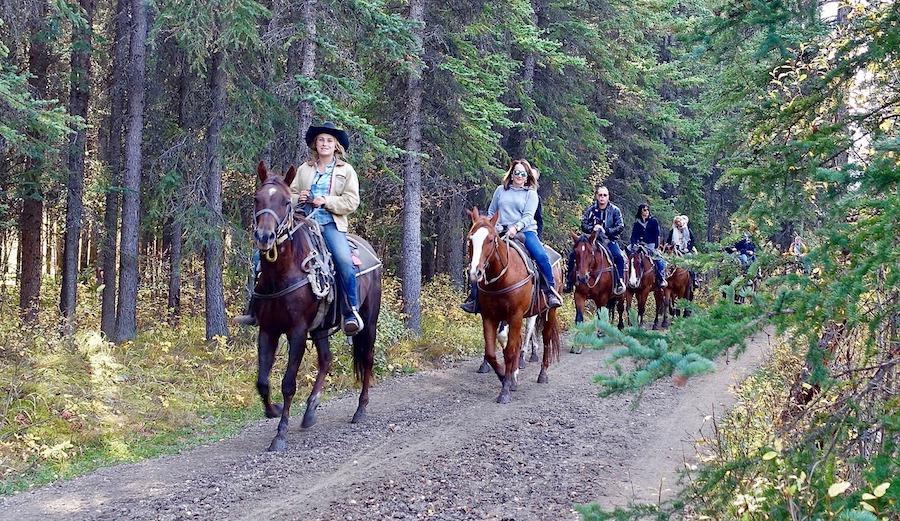 randonnée équestre cheval camping argentat corrèze