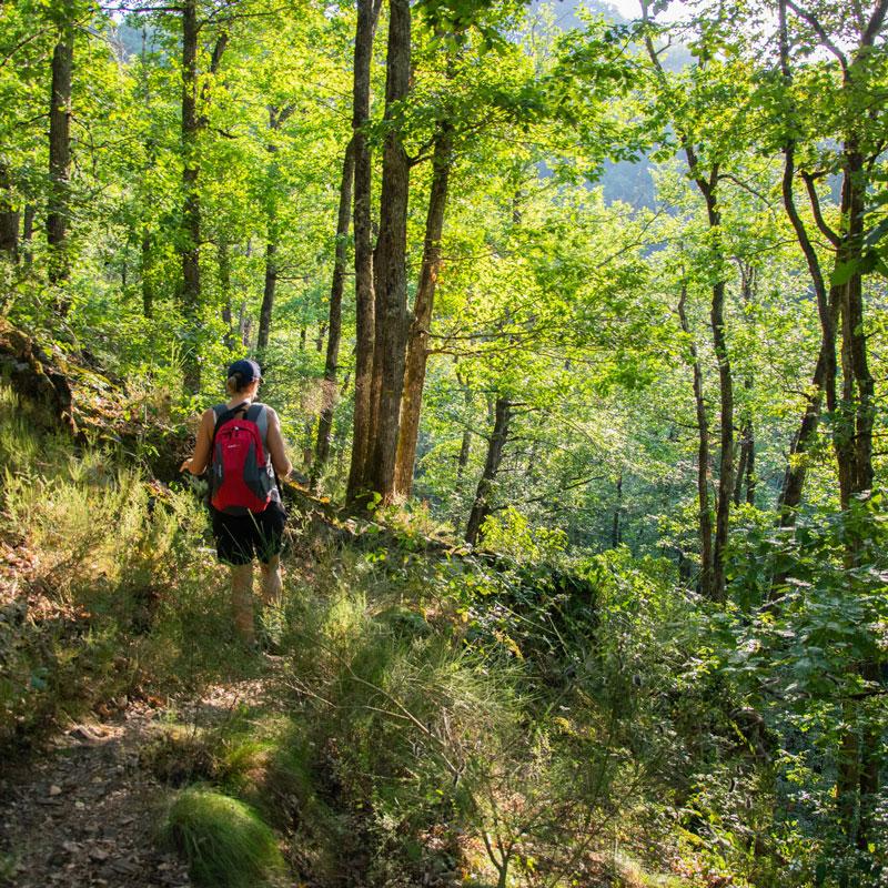 camping activité randonnée Corrèze